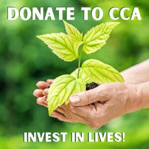 Donate Button.  For donating to CCA.